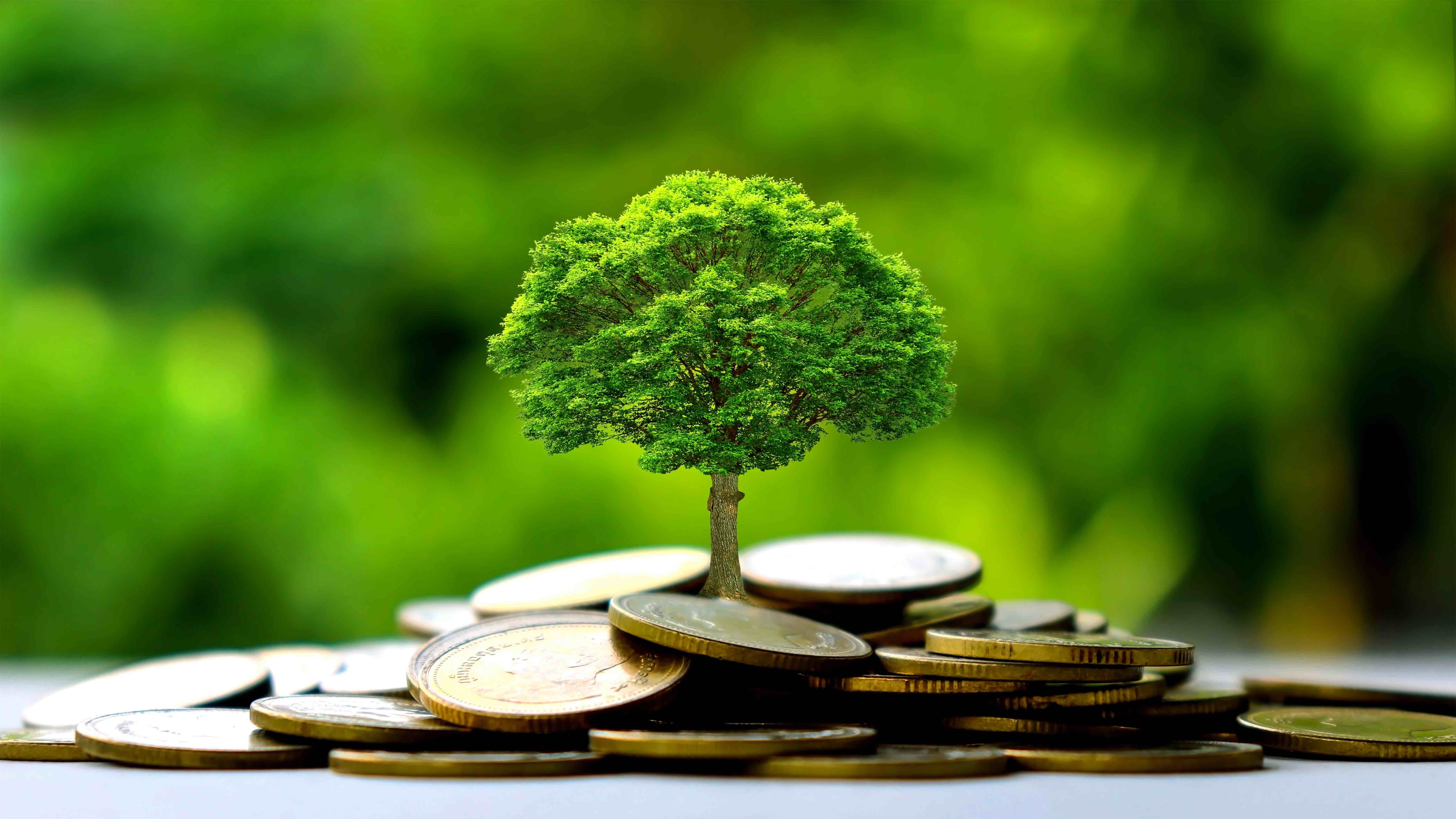 Jak inwestować małe kwoty - i osiągać duże zyski?