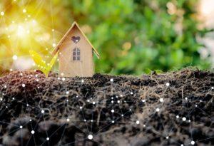 inwestowanie w ziemię