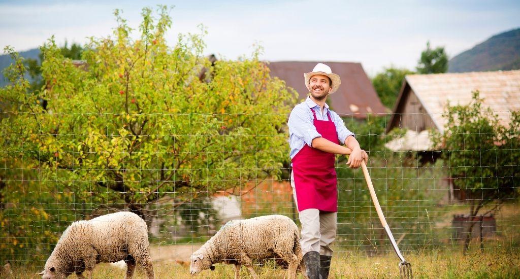 jak założyć gospodarstwo rolne